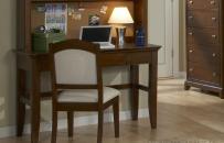 Computer Desk/Vanity